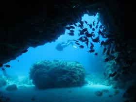 Price List Eco Dive School Cabo Verde
