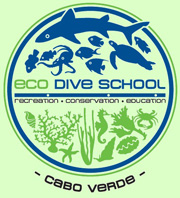 Eco Dive School